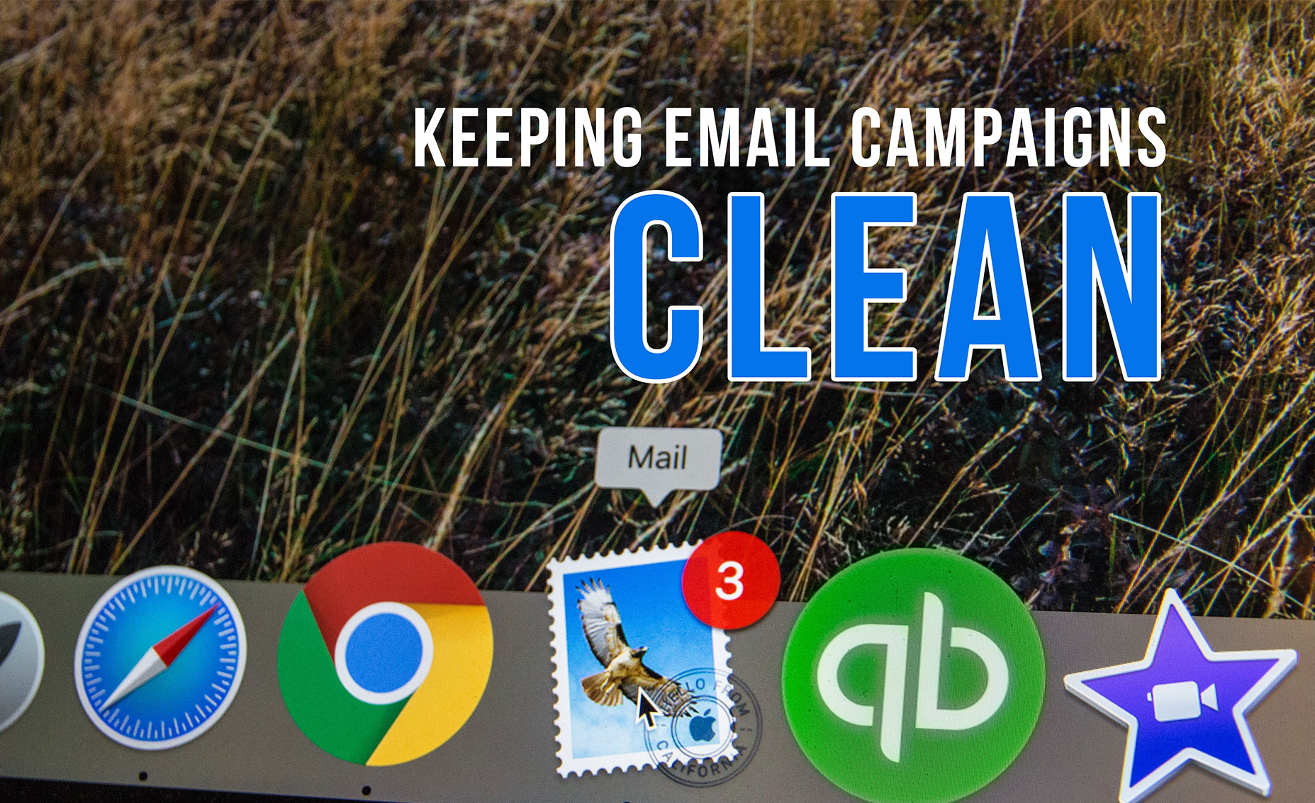 A few important tips on how to keep your email lists clean and effective!
